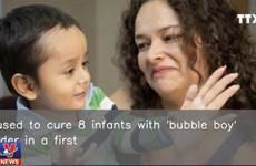 [Video] Bác sỹ Mỹ dùng virus HIV chữa bệnh 'em bé bong bóng'