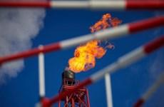 Belarus ngừng cung dầu của Nga cho Ba Lan, Ukraine và các nước Baltic