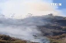 [Video] 6 hecta rừng đặc dụng Đèo Cả tại Phú Yên bị thiêu rụi