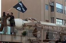 Syria: SDF giam giữ 5.000 chiến binh IS người nước ngoài