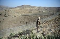 Tấn công xuyên biên giới tại Pakistan gây nhiều thương vong