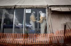 Báo động số người tử vong do đại dịch Ebola tại CHDC Congo