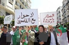 An ninh Algeria bắt giữ em trai của cựu Tổng thống Bouteflika