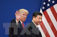 Tổng thống Mỹ: Không cần đẩy nhanh đàm phán thương mại với Trung Quốc