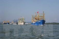 Chiến lược biển Việt Nam: Bảo tồn, khai thác hiệu quả nguồn hải sản