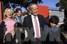 Bầu cử Liên bang Australia: Công đảng đối lập đang chiếm ưu thế