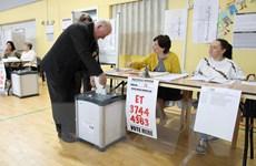 Bầu cử EP 2019: Đảng Xanh có được kết quả ngoài mong đợi tại Ireland