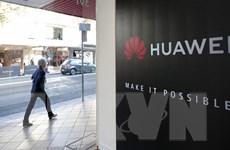 Huawei: 1.200 công ty Mỹ sẽ gánh chịu thiệt hại từ các lệnh cấm