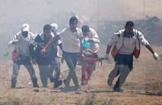 Iran hỗ trợ hơn 650.000 USD cho các gia đình Palestine ở Gaza