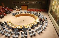 Đại sứ Senegal: Việt Nam luôn có trách nhiệm và theo đuổi hòa bình