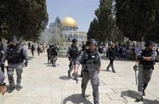 [Video] Đụng độ tại thánh địa Jerusalem, 45 người bị thương