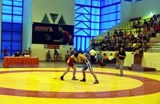 Khai mạc Giải vô địch trẻ Vật cổ điển, Vật tự do toàn quốc năm 2019