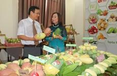 Giá trị xuất khẩu rau quả trong tháng Năm tăng 10,3%