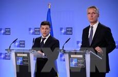 Tổng thống Zelenskiy: Ukraine gia nhập NATO sau khi trưng cầu ý dân