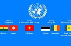 [Video] Việt Nam tranh cử vào Hội đồng Bảo an Liên hợp quốc