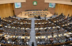AU hối thúc các nhân tố bên ngoài ngừng can thiệp vào Sudan