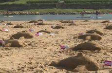 [Video] Gần 300 người lập kỷ lục Guinness điêu khắc cát hình cá heo