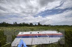 Vụ rơi MH17: Cuộc hội thoại sốc tiết lộ các nghi can bắn rơi máy bay