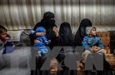 LHQ kêu gọi các nước cho phép hồi hương người thân của các tay súng IS