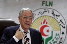 Algeria bắt Phó Chủ tịch Thượng viện thân cựu Tổng thống Bouteflika