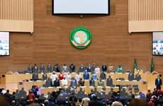 Lãnh đạo các nước châu Phi tham dự Hội nghị thượng đỉnh AU tại Niger