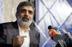 Iran bắt đầu làm giàu vượt ngưỡng urani 3,67% đề ra trong JCPOA