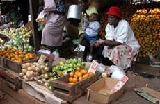 Chặng đường dài để đưa 'Gắn kết với châu Phi' về đích
