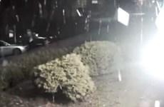 Ukraine: Trụ sở đài truyền hình bị tấn công bằng súng phóng lựu