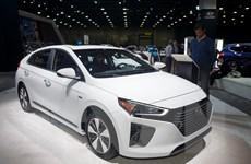 Hàn Quốc: Xuất khẩu ôtô tăng 2,5% trong nửa đầu năm 2019