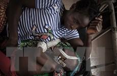 Số ca tử vong do HIV/AIDS trên thế giới giảm 1/3 so với năm 2010