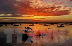 [Photo] Binh minh của những ngư dân trên đầm phá Tam Giang