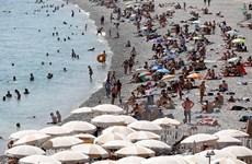 Nắng nóng tại châu Âu: Nhiệt độ tại Pháp và Hà Lan lên gần 42 độ C