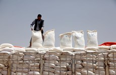 UAE phát động chiến dịch viện trợ lương thực cho người dân Yemen