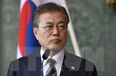 Hàn Quốc thúc đẩy hoạt động khai quật toàn bộ hài cốt binh sỹ tại DMZ