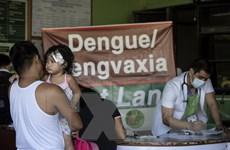 Dịch sốt xuất huyết bùng phát, Philippines vẫn cấm sử dụng vắcxin