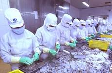 Cần Thơ: Xây nhà máy chế biến vỏ tôm thành nguyên liệu thực phẩm