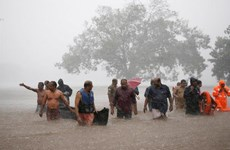 Mưa lũ hoành hành tại nhiều bang của Ấn Độ, gần 100 người thiệt mạng
