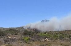 Cháy rừng bùng phát mạnh trên đảo Elafonisos của Hy Lạp