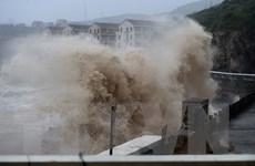 Trung Quốc: Hàng trăm nghìn người đi sơ tán tránh siêu bão Lekima