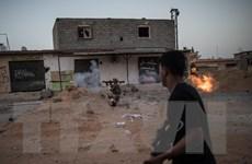 Chính phủ Libya chấp nhận đề xuất ngừng bắn của Liên hợp quốc