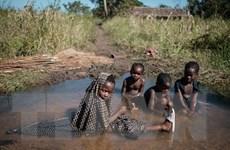 Các nước miền Nam châu Phi thiếu lương thực trầm trọng do thiên tai