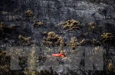 Cháy rừng tại hòn đảo lớn thứ hai Hy Lạp, hơn 500 người phải sơ tán