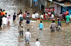 Ấn Độ ban bố cảnh báo lũ, số nạn nhân thiệt mạng lên tới 244 người
