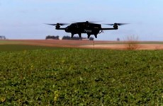 Luxembourg ứng dụng thiết bị không người lái trong việc trồng nho