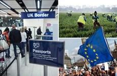 Số người nhập cư ròng vào Anh giảm thấp nhất kể từ năm 2013