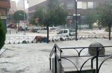 Tây Ban Nha: Giao thông tại thủ đô Madrid tê liệt do ngập lụt nặng