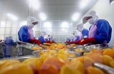 Trao đổi thương mại Việt Nam-Israel có thể đạt hơn 800 triệu USD năm