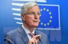 EU vẫn giữ quan điểm không thay đổi thỏa thuận 'ly hôn' với Anh