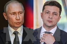 Lãnh đạo Nga và Ukraine thảo luận việc tổ chức hòa đàm