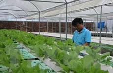 Ứng dụng công nghệ cao vào nông nghiệp để nâng cao tính cạnh tranh